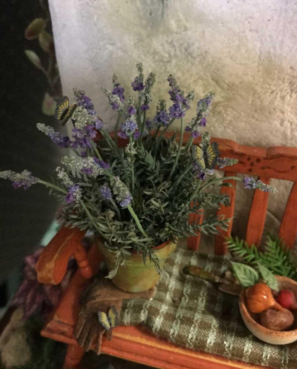 lavendar-closeup